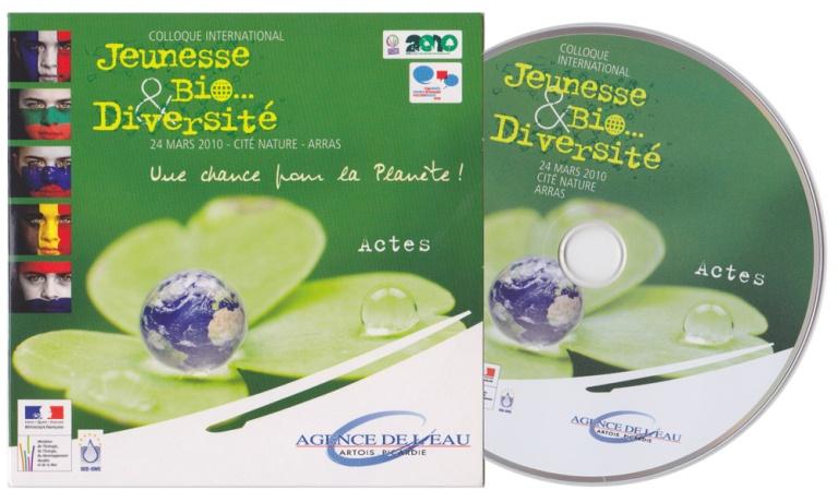 dvd-2010